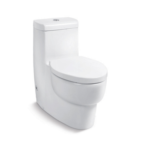 Ove Dual Flash One-Piece Toilet K-45382R-NS-0