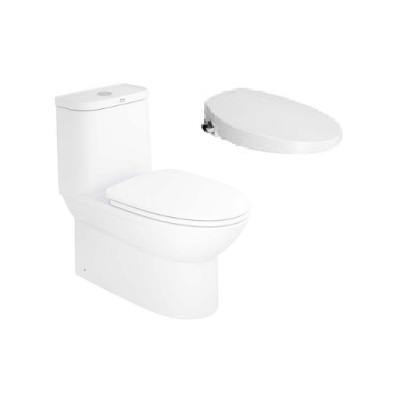 American Standard Neo modern one piece toilet CL25315 with slim smart washer
