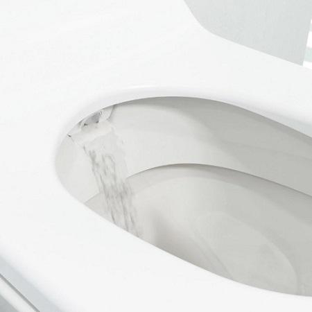 Geberit Aquaclean Sela-shower nozzle