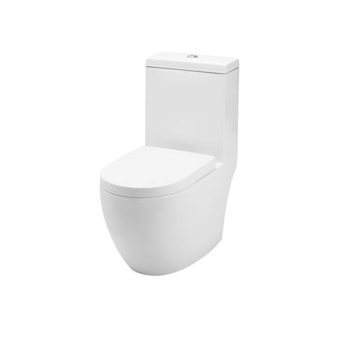 Baron W-888 One-piece WC